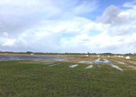 Mykje regn gir blaute kjelver ved Hå-elva.