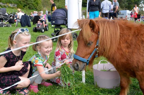 Det er morsomt å mate dyrene syns disse tre jentene som besøkte Åpen Gård.
