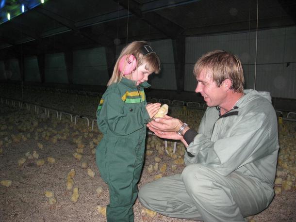 Hvor blir Trøndelags kyllingslakteri lokalisert i framtida?