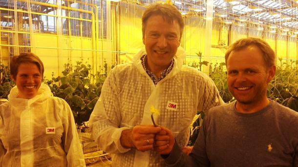 Lars Petter Bartnes (i midten) fekk ei omvisning i veksthuset til grønsaksprodusent, Jone Wiig. Til venstre står leiar i Rogaland bondelag, Marit Epletveit.