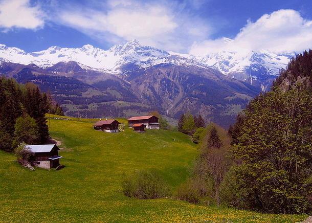 Landbruk i Sveits