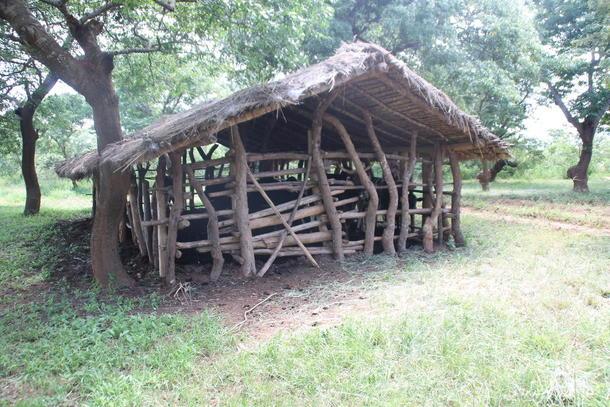 Fjøs i Malawi