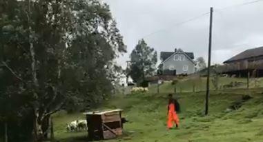 Gardsbesøk i Sundsdalen