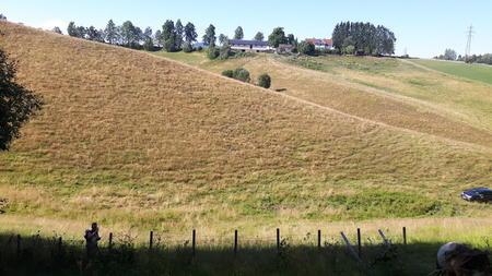 Brunsvidd innmarksbeite på Romerike. Foto: Anders Klaseie.