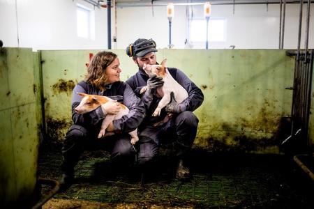 Gry-Heidi Ruud-Wethal og Marius Amundsen Ruud-Wethal driver med smågrisproduksjon på Kløfta.
