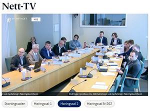 Skjermdupp fra Stortingets nett-TV