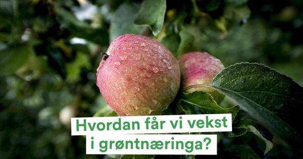 vekst i grøntnæringa