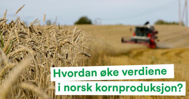 Hvordan øke verdiene i norsk kornproduksjon