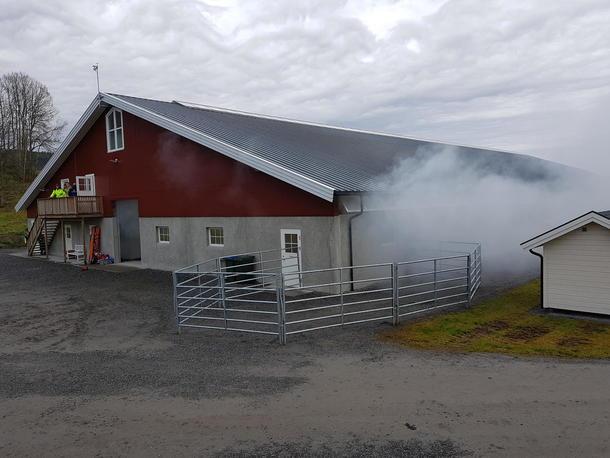 Røyk siver ut fra fjøs