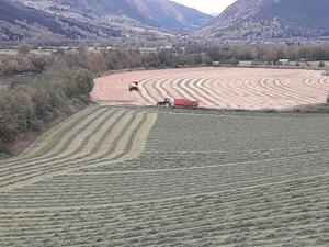 Gode høsteforhold på Formo