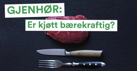 Er kjøtt bærekraftig