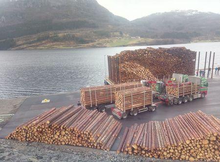 Storslått opning av Dalsfjorden tømmerkai