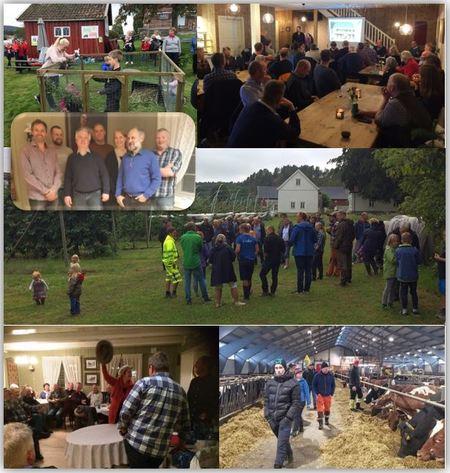 Bildekolasj av Sande og Strømm Landbrukslags aktiviteter 2019