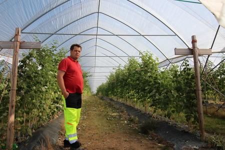 Bærbønder er blant dem som trenger mange hender i arbeid. Her fra Råde i Østfold.