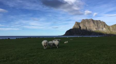 Norsk Kulturarv skal også i år dele ut ein nasjonal kulturlandskapspris. No treng dei tips til gode kandidatar.