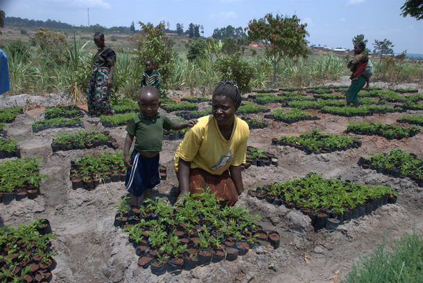 Kvinne og barn i en åker i Malawi.