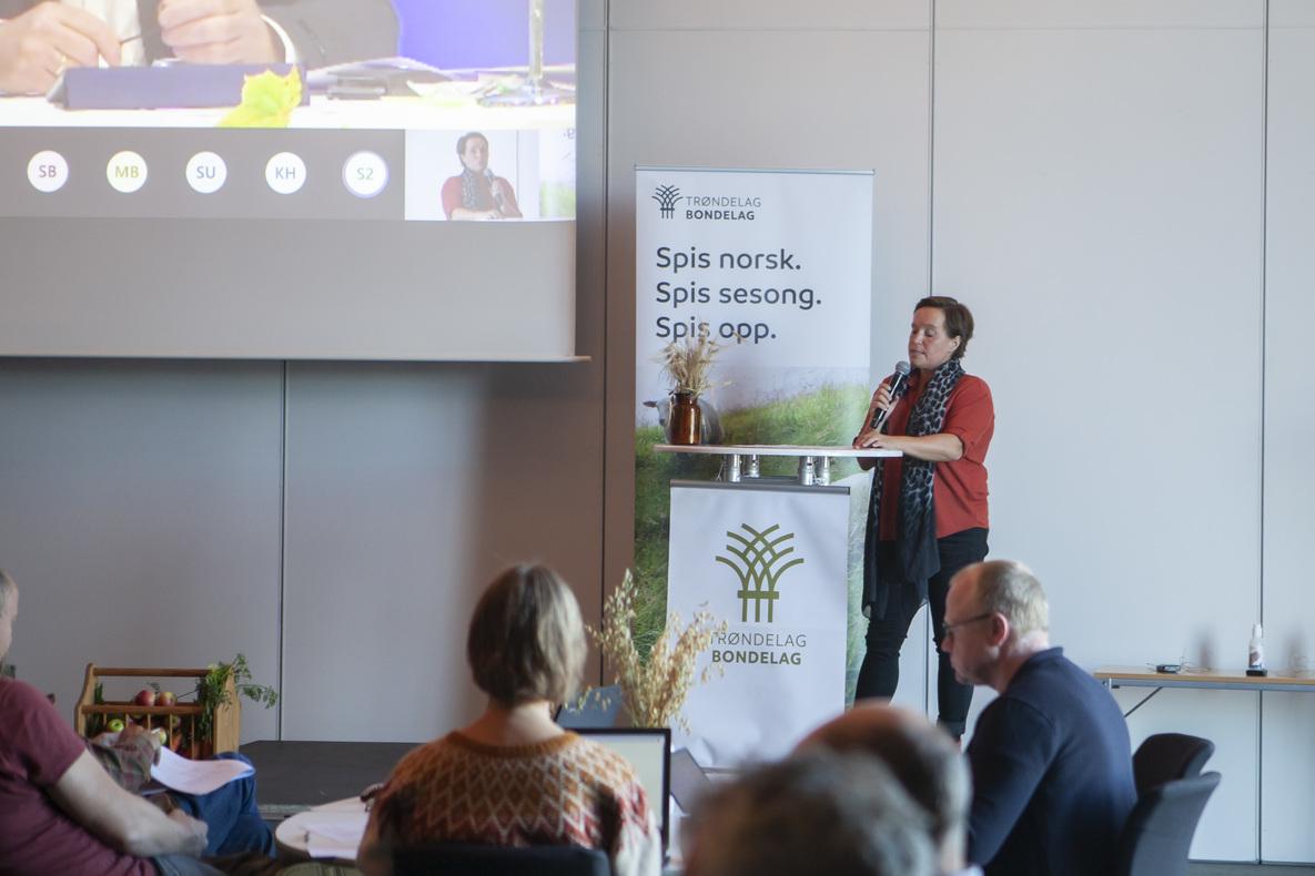 Fylkesleder Kari Åker på talerstolen, under gjennomgang av Næringspolitisk Program