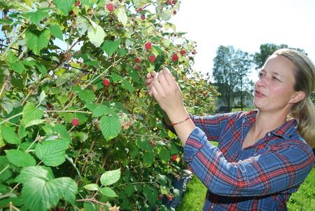 Julie Engeloug i bringebæråkeren