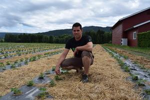 Steffen Green, jordbærbonde fra Modum